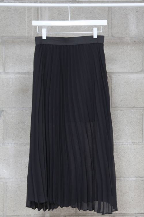 Sheer Pleated Skirt