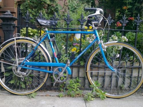 Jen's Bike