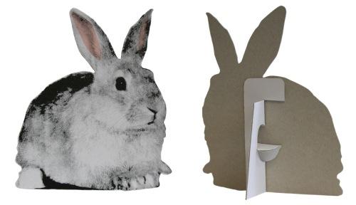 Flat Pet - Rabbit