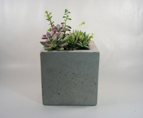Rough Fusion Square Concrete Planter