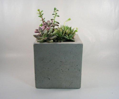 Rough Fusion Square Concrete Planter